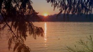 Lake Mayfield